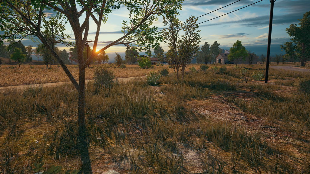 PlayerUnknown's Battlegrounds | NVIDIA | Bluehole